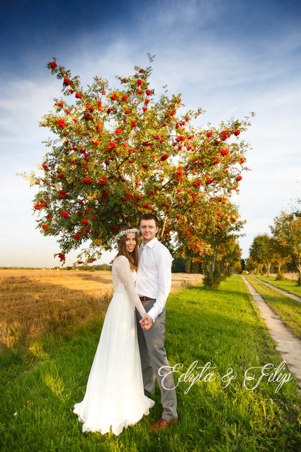 sesje ślubne w plenerze Pozznań